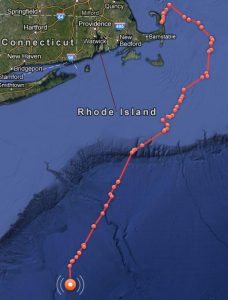Mary Lee Great White Shark Satellite Tracking